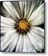 50 Shades Of Flower Metal Print