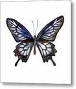 54 Ceylon Rose Butterfly Metal Print
