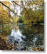 Alley With Falling Leaves In Fall Park Metal Print