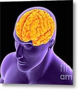 Conceptual Image Of Human Brain Metal Print
