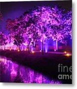 Illumina Light Show At Schloss Dyck Germany Metal Print by David Davies