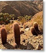 Indian Canyons Metal Print