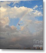 6- Rainbow And Seagull Metal Print