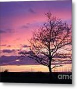 Spectacular Sunset Epsom Downs Surrey Uk Metal Print