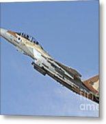 An F-15i Raam Of The Israeli Air Force Metal Print