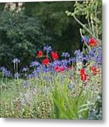 Beth Chatto Gardens Metal Print