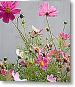 Close-up Of Flowers Metal Print