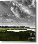 Southern Tall Marsh Grass Metal Print