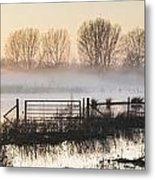 Panorama Landscape Of Lake In Mist With Sun Glow At Sunrise Metal Print
