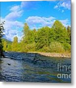 Salmon  Creek  Metal Print by Tim Rice