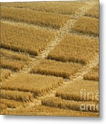 Tracks In Field Metal Print