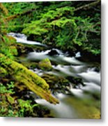 Usa, Oregon, Mt Hood National Forest Metal Print
