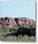 785 Sl  Red Rock Medow Metal Print
