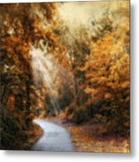 Late Autumn Trail Metal Print