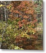 Fall In Upstate Ny Metal Print