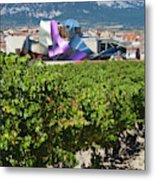 Spain, Basque Country Region, La Rioja Metal Print