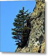 Devil's Slide Hike Metal Print