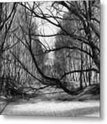 9 Black And White Artistic Painterly Icy Entrance Blocked By Braches Metal Print