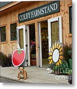 #923 D720 Colby Farm Stand Metal Print