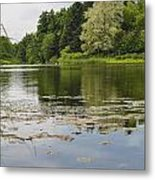 Pond With Trees  Metal Print