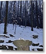 Stone Altar In The Woods Metal Print