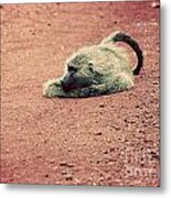 A Baboon On African Road Metal Print