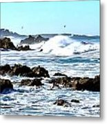 Seascape And Sea Gulls Metal Print