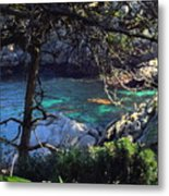 A Beautiful Cove At Point Lobos Metal Print