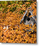 A Bird House Sits Empty In Fall Metal Print