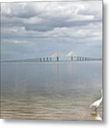A Bird Stands Reflected In The Waters Metal Print