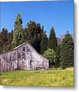 A Bit Of Country Metal Print