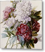 A Bouquet Of Red Pink And White Peonies Metal Print