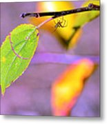 A Branch With Leaves Metal Print
