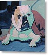 A Bulldog In Love Metal Print