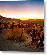 A Cactus Paradise Metal Print