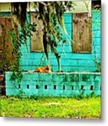 A Cat And His Castle Metal Print