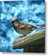A Chance Of Showers Metal Print