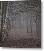 A Chill In The Trees Metal Print