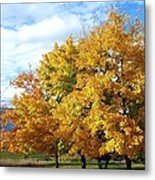 A Chromatic Fall Day Metal Print