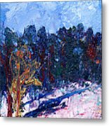 A Cold Day In March Metal Print