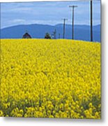 A Country Mile Metal Print