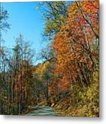 A Country Road Metal Print