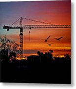 A Crane And Three Birds Metal Print
