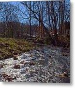 A Creek Runs Though It Metal Print