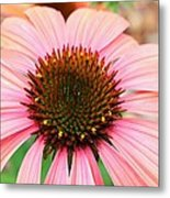 A Daisy For You Metal Print