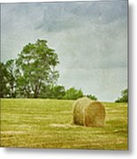 A Day At The Farm Metal Print
