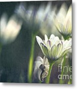 A Day In August Metal Print