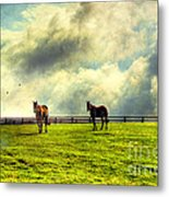 A Day In Kentucky Metal Print by Darren Fisher