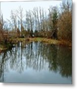 A Day To Reflect Metal Print