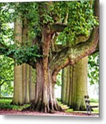 A Day Without You. Park Of The De Haar Castle Metal Print by Jenny Rainbow